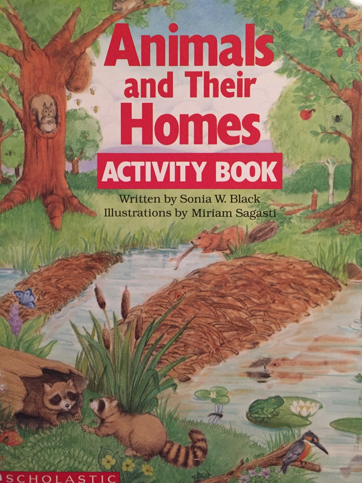 Animals and Their Homes Activity Book: Sonia Black