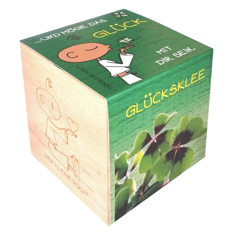 Der kleine Yogi Pflanzen im Holzwürfel - GLÜCK - Glücksklee Feel Green