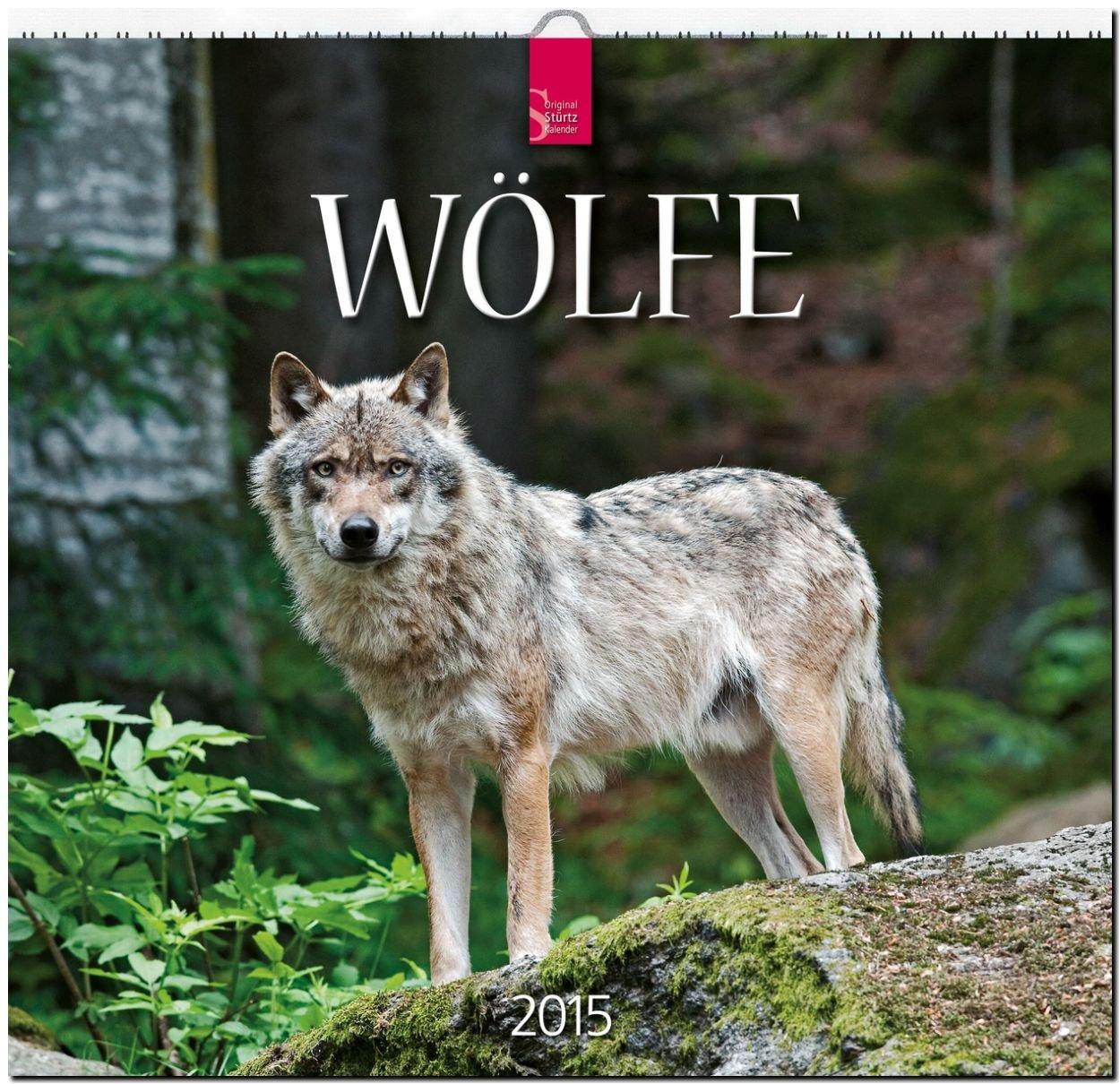 Wölfe 2015 - Original Stürtz-Kalender - Mittelformat-Kalender 33 x 31 cm