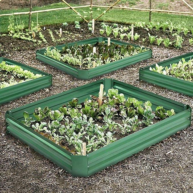 Cama de jardín de Verduras genéricas de Color Verde y Blanco con ...