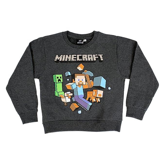 Minecraft Oficial Aventura Niños Camisetas Camiseta De Manga Larga Top | Imagen Principal para ilustrar: Amazon.es: Ropa y accesorios