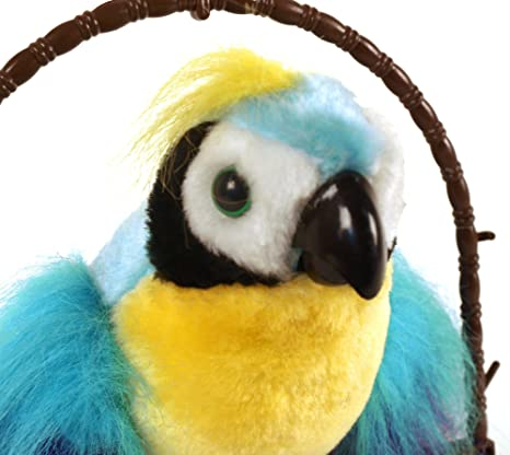 Polly The X-Rated Insulting Parrot, Motion Activated