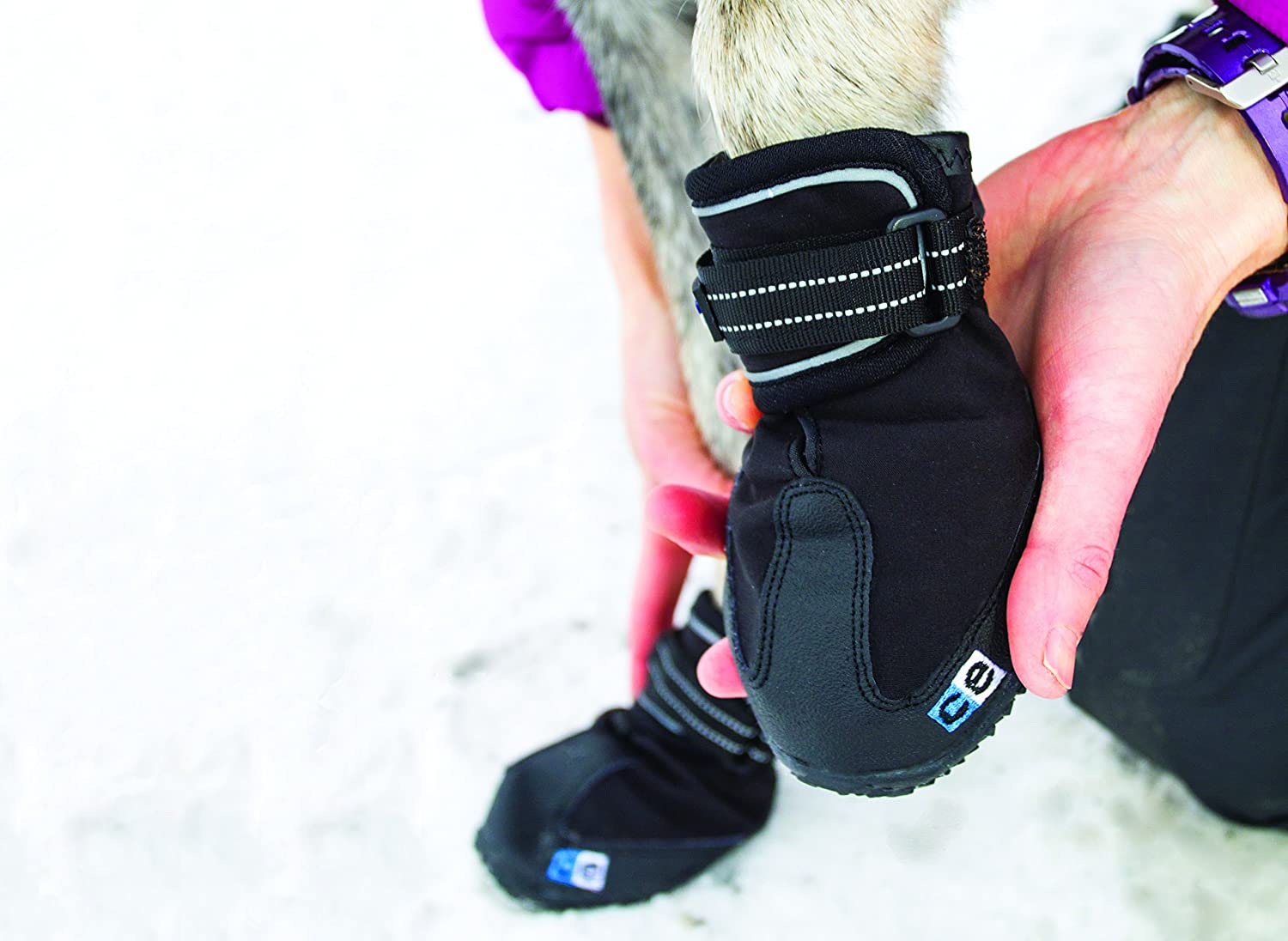Equipement trail boutique running sports outdoor shop - Amazon Com Canine Equipment Ultimate Trail Dog Boots Large Black Pet Boots Pet Supplies