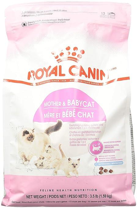 ROYAL CANIN Madre y Babycat Comida para gatos, 3,5-libra