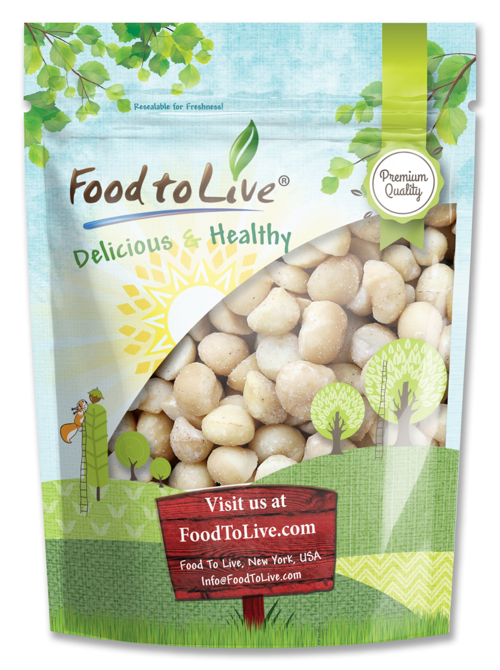 Food to Live Macadamia Nuts (Raw, Kosher) (1 Pound)