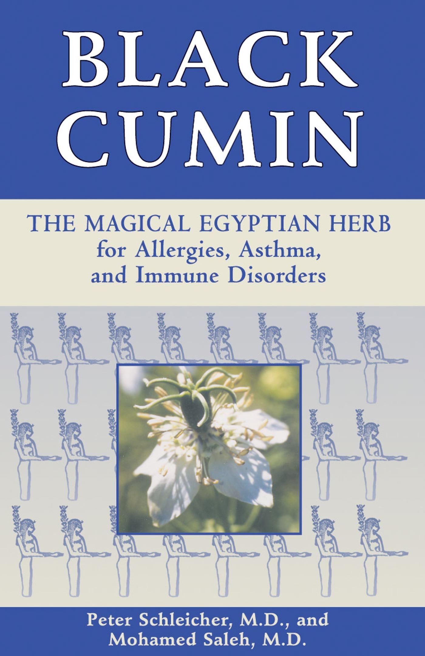 Black Cumin Allergies Conditions Disorders