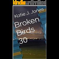 Broken Birds 30