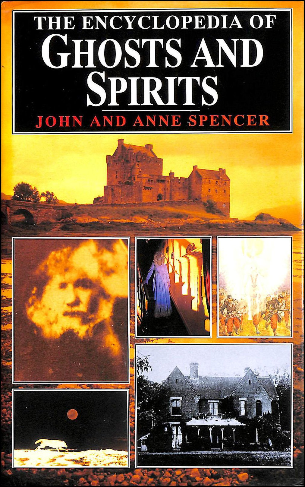 Download The Encyclopedia of Ghosts and Spirits PDF