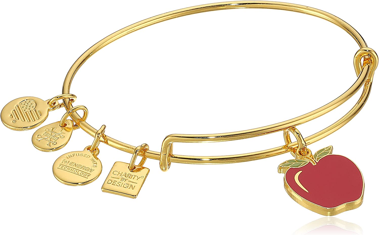 Alex and Ani Apple EWB, Bangle Bracelet
