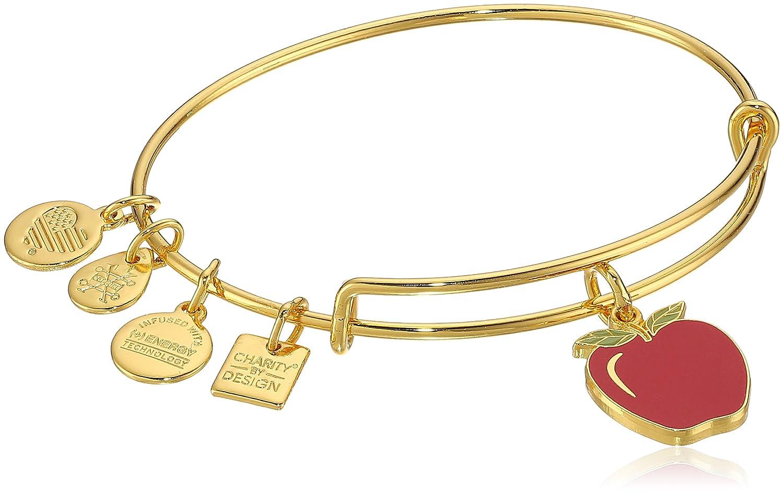 821674e06 Amazon.com: Alex and Ani Charity By Design, Apple EWB, Shiny Gold Bangle  Bracelet: Jewelry