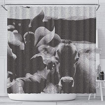 Amazon Pawick BlackWhite Brown Swiss Cattle Cow Print