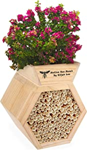 Native Insect Hotel Rooftop Garden Outdoor Wooden Solitary Pollinating Mason Bee Ranch by Elijah Lee