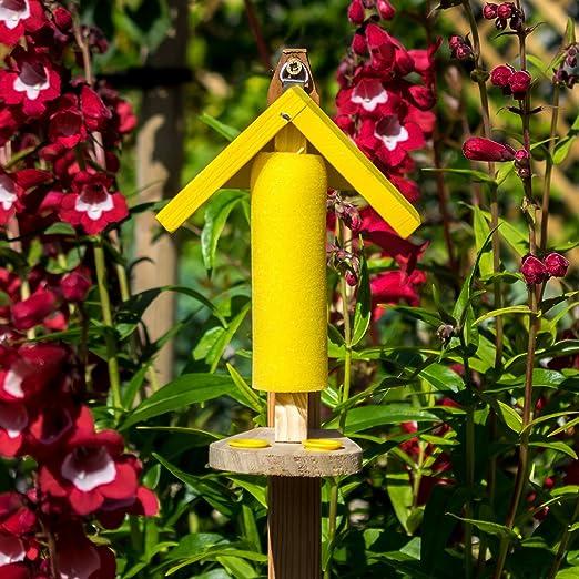 Bebedero para Mariposas Papillon: Amazon.es: Jardín