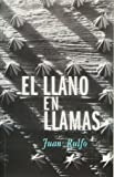 El llano en llamas/ The Burned Plain (Idiomas Y Literatura) (Spanish Edition)