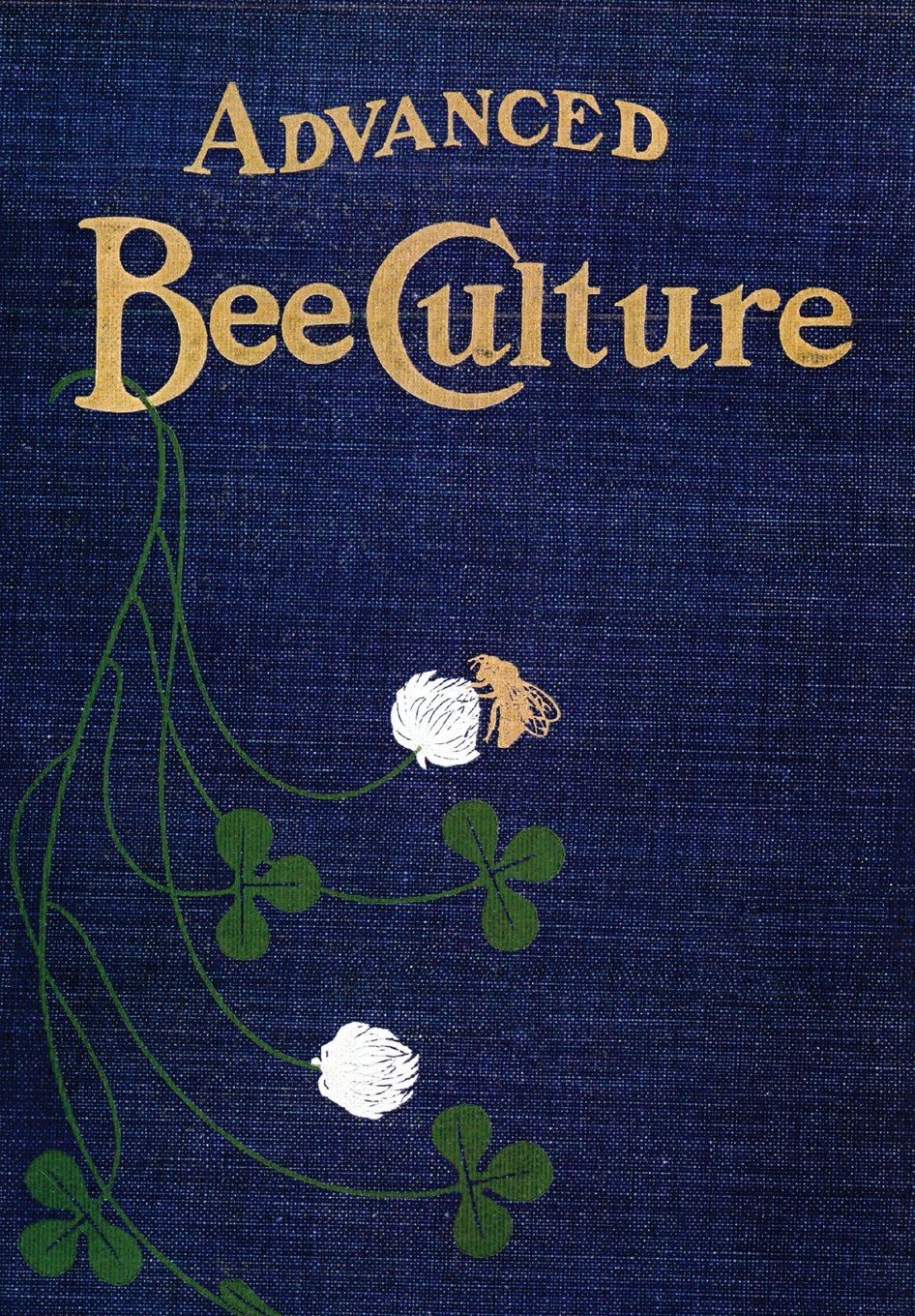 Read Online Advanced Bee-Culture: Its Methods and Management PDF