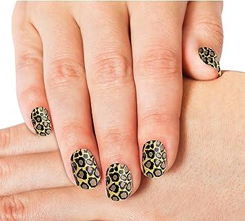 Amazon Fake Nails Set Of 24 Leopard Animal Print Acrylic