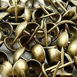 """decotacks Upholstery Nails, Furniture tacks, Upholstery Tacks, Thumb Tack Push Pins, 7/16"""" - 100 PCS/ Box [Antique Brass, French Natural] DX0511AB"""