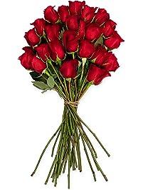 Benchmark Bouquets 2 Dozen Red Roses, No Vase (Fresh Cut Flowers)