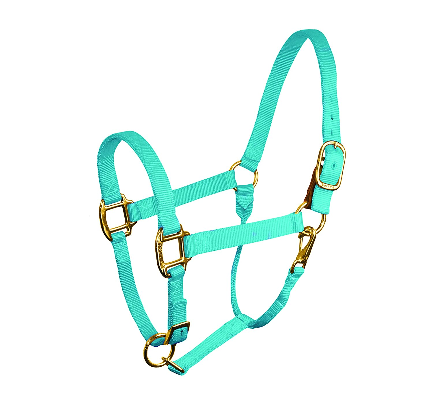 Perri's Horse Nylon Stock Halter With Safety Tab, Turquoise