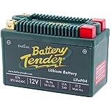 DELTORAN デルトラン バッテリーテンダー リチウムバッテリー LiFePO4 240CCA 240CLI