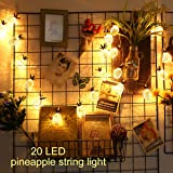 Pineapple String Light, Elfeland 20LED 7.2FT Novelty Fairy Lights Battery Powered Metal Mesh Lantern Bubble Ball Lights for Christmas Home Wedding Party Bedroom Birthday Decoration (Rose Gold)