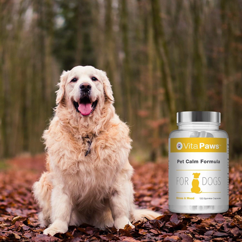 VitaPawsTM Fórmula calmante para perros | 120 cápsulas para ...