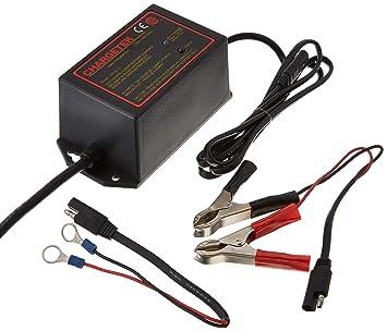Amazon.com: chargetek CK150 – 1 1,5 amperios Smart ...