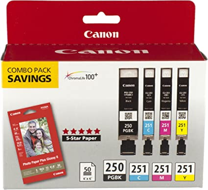 40 Pack New Replacement Ink Set for Canon Pixma 250 251 MG6620 MX922 IP7220