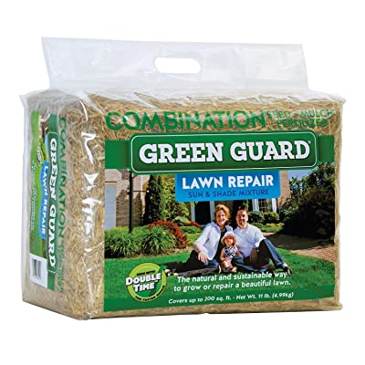 Amturf Enterprises Guard Lawn Repair Bale, Green : Garden & Outdoor