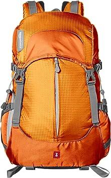 Amazonbasics Camera Backpack Hiking Gear Camera Photo