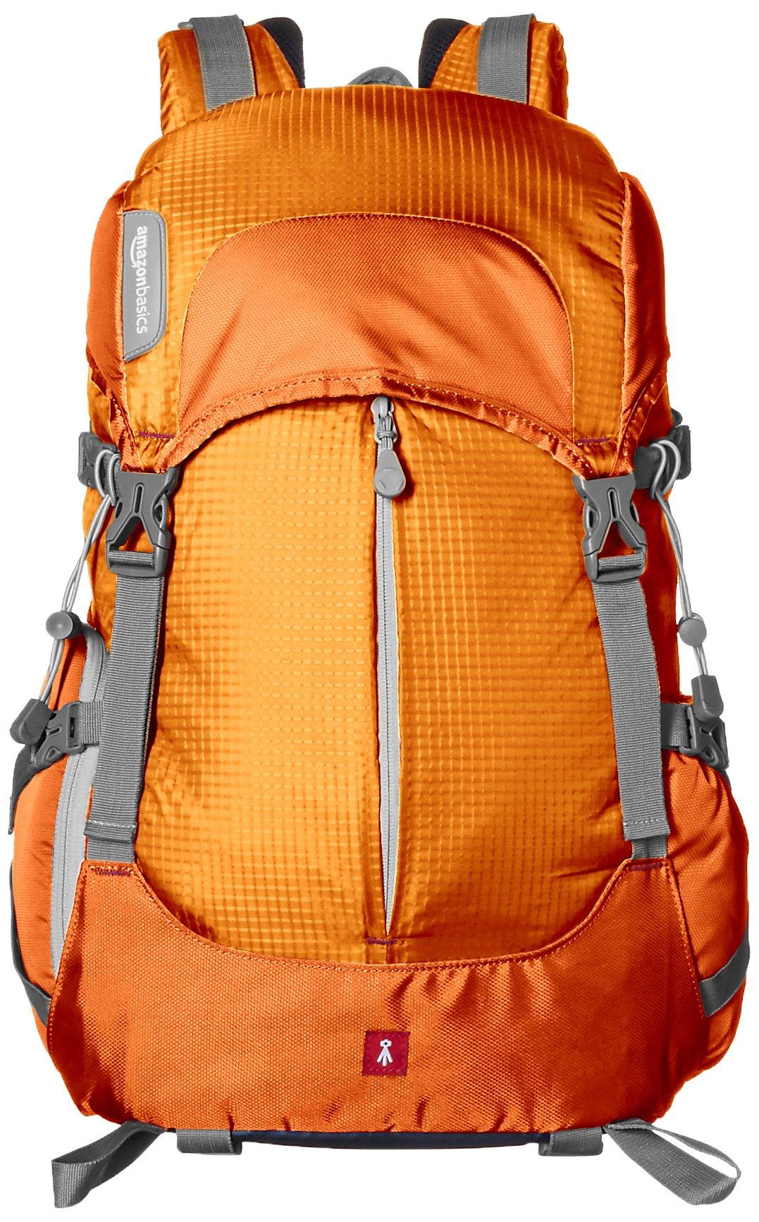 AmazonBasics Hiker Camera and Laptop Backpack - Orange