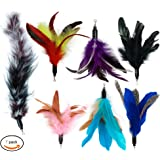 Cat Wand Feather Refills For Interactive Cat and Kitten Wands include Replacement Feathers and Soft Furry Tail