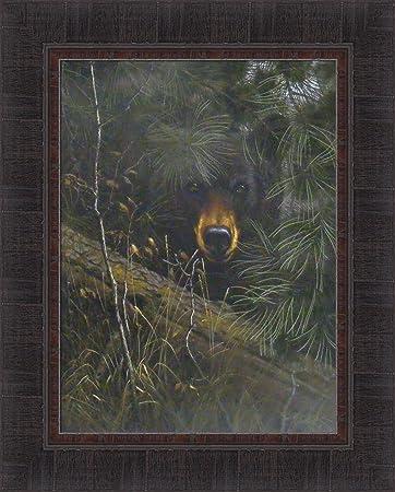 The Watcher by Derk Hansen 17×21 Black Bear Hiding In Pine Trees Framed Art Print Wall D cor Picture