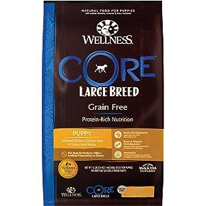 Amazon Com Wellness Core Natural Grain Free Dry Dog Food Puppy 12