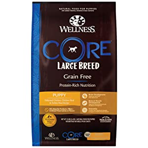 Wellness CORE Grain-Free Large Breed Puppy