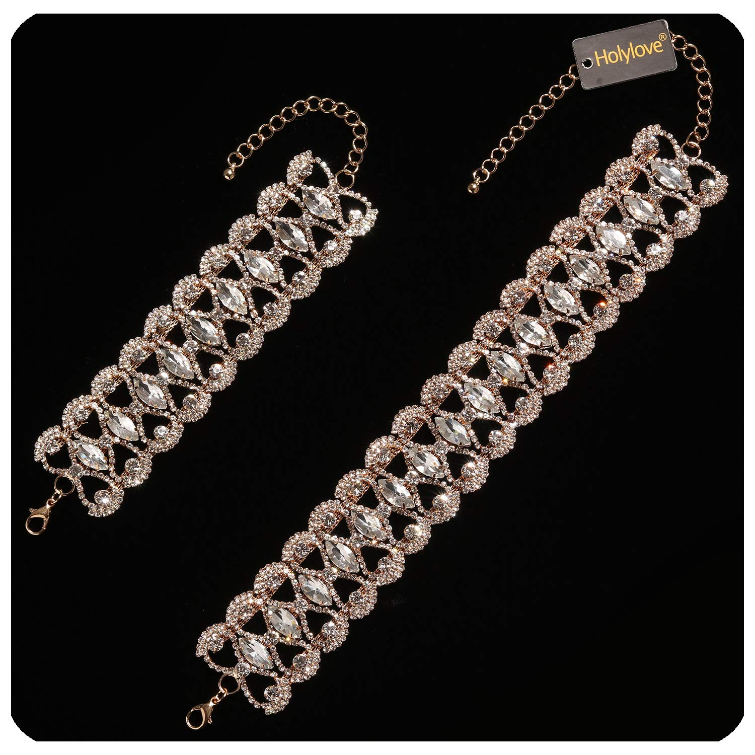 Holylove Fashion Choker Necklace Chain for Daily Party Wedding Club Show Gold Gift Box-HLN00025 Gold US