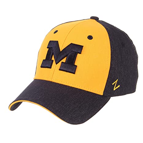 795fac30d2 Amazon.com : Zephyr University of Michigan Wolverines Blue and Gold ...
