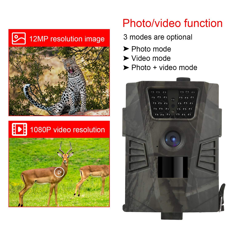 Cazar Vigilancia de la Fauna DIGITNOW Sendero Juego Camera 12MP C/ámaras de Caza 1080P FHD Impermeable,Gran Angular de 120/° y 30pcs IR LED Infrarrojo Visi/ón Nocturna con hasta 65ft//20m