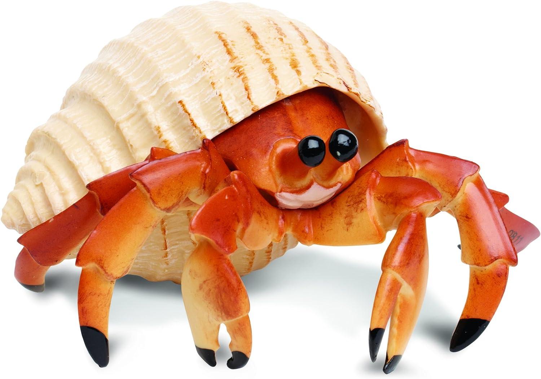 Amazon Com Safari Ltd Incredible Creatures Hermit Crab Toys Games