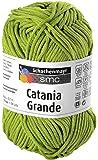 "Schachenmayr ""Catania Grande Apfel, Farbe 3205"