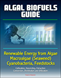 Algal Biofuels Guide: Renewable Energy from Algae, Macroalgae (Seaweed), Cyanobacteria, Feedstocks, Cultivation, Harvesting, Extraction, Conversion, Distribution and Utilization (English Edition)