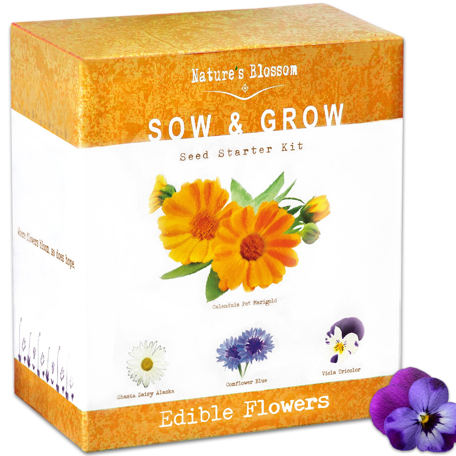 Best Rated In Flower Plants Seeds Helpful Customer Reviews