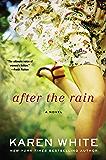 After the Rain (A Falling Home Novel)
