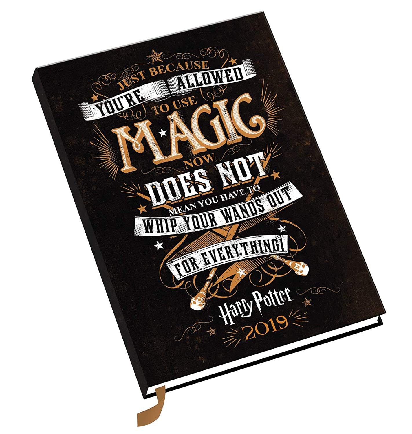 Harry Potter A5 Official 2019 Diary - A5 Diary Format ...