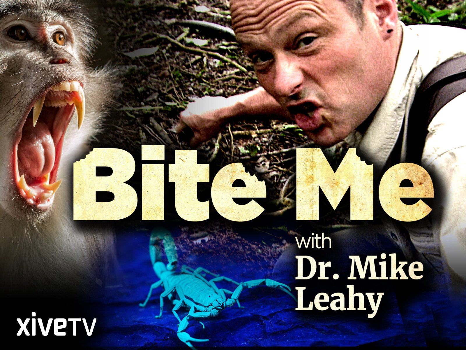 Bite Me with Dr. Mike Leahy