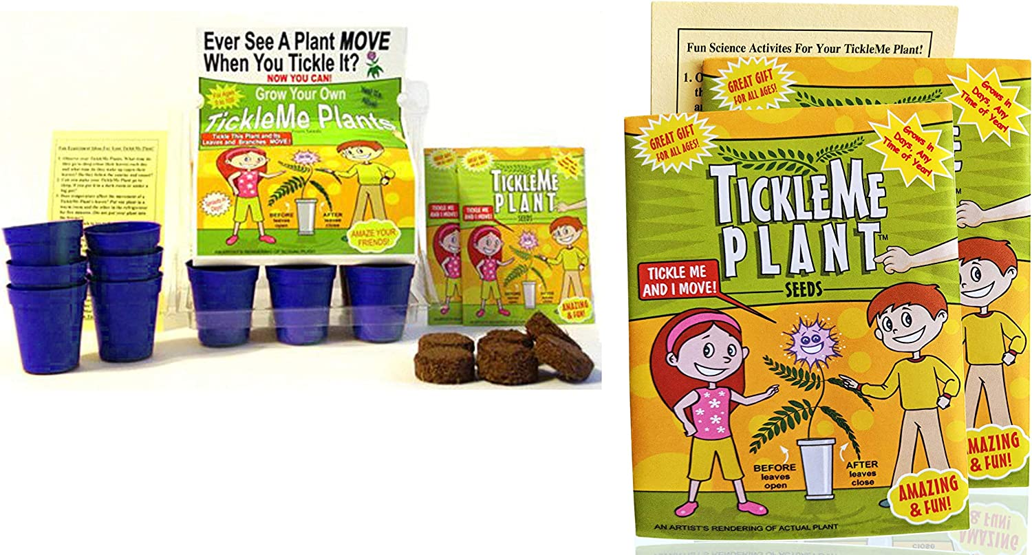 TickleMe Plant Green and 2 Extra TIckleMe Plant Seeds with Fun Activity