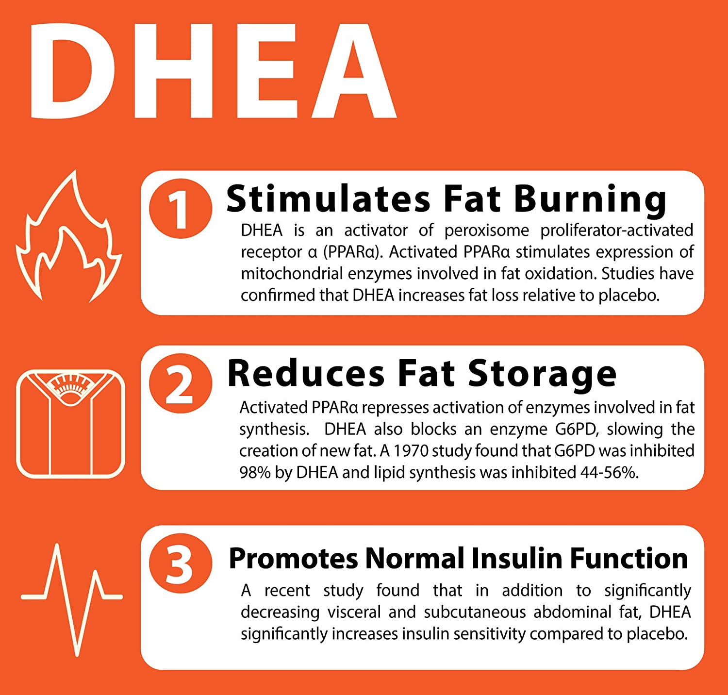 Amazon.com: DHEA 25mg With Bioperine for Optimal Absorption- Counterbalance To Cortisol for Stress Relief-Supports Brain Health, Memory-May Act As ...