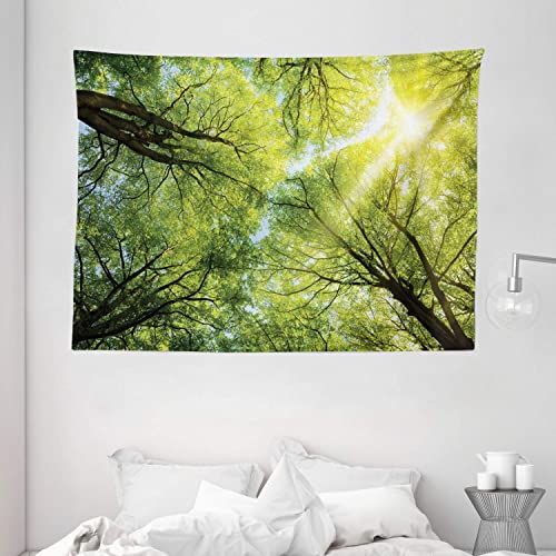 Ambesonne Forest Tapestry, Warm Spring Sun Beaming Through Canopy of Tall Beech Trees Romantic Scene, Wide Wall Hanging for Bedroom Living Room Dorm, 80 X 60 , Yellow Green