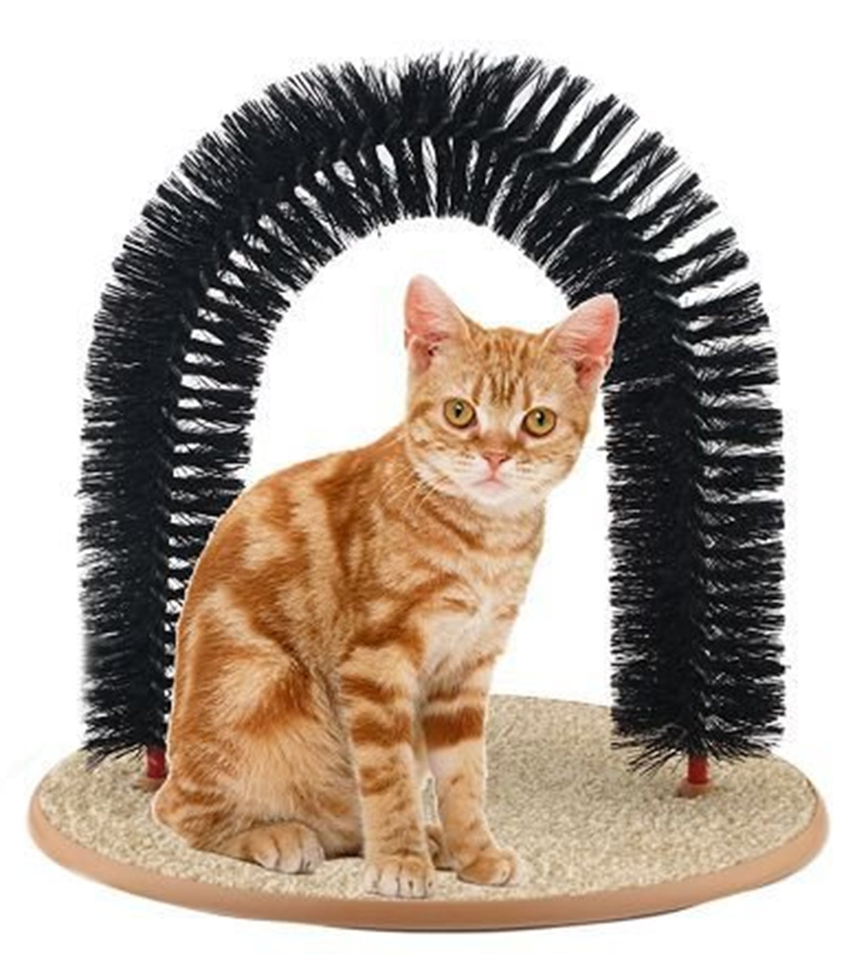 All-star Marketing Group Arch Cat Self-Groomer, Massager, Scratch Itch Toy