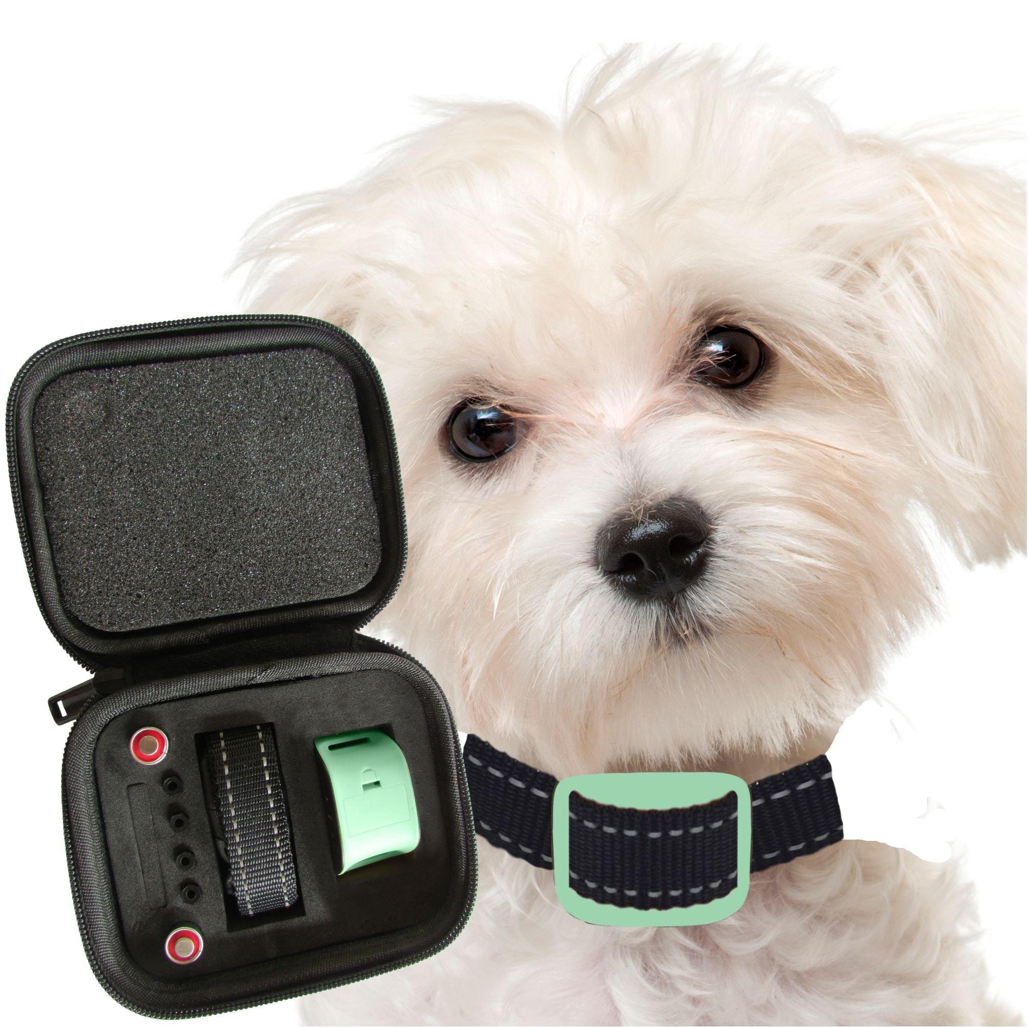 Our K9 Mint Bark Collar. Toy Breed No Bark Collar & Small Dog Anti-Bark Colla.. 18